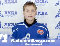 Владислав Кибакин